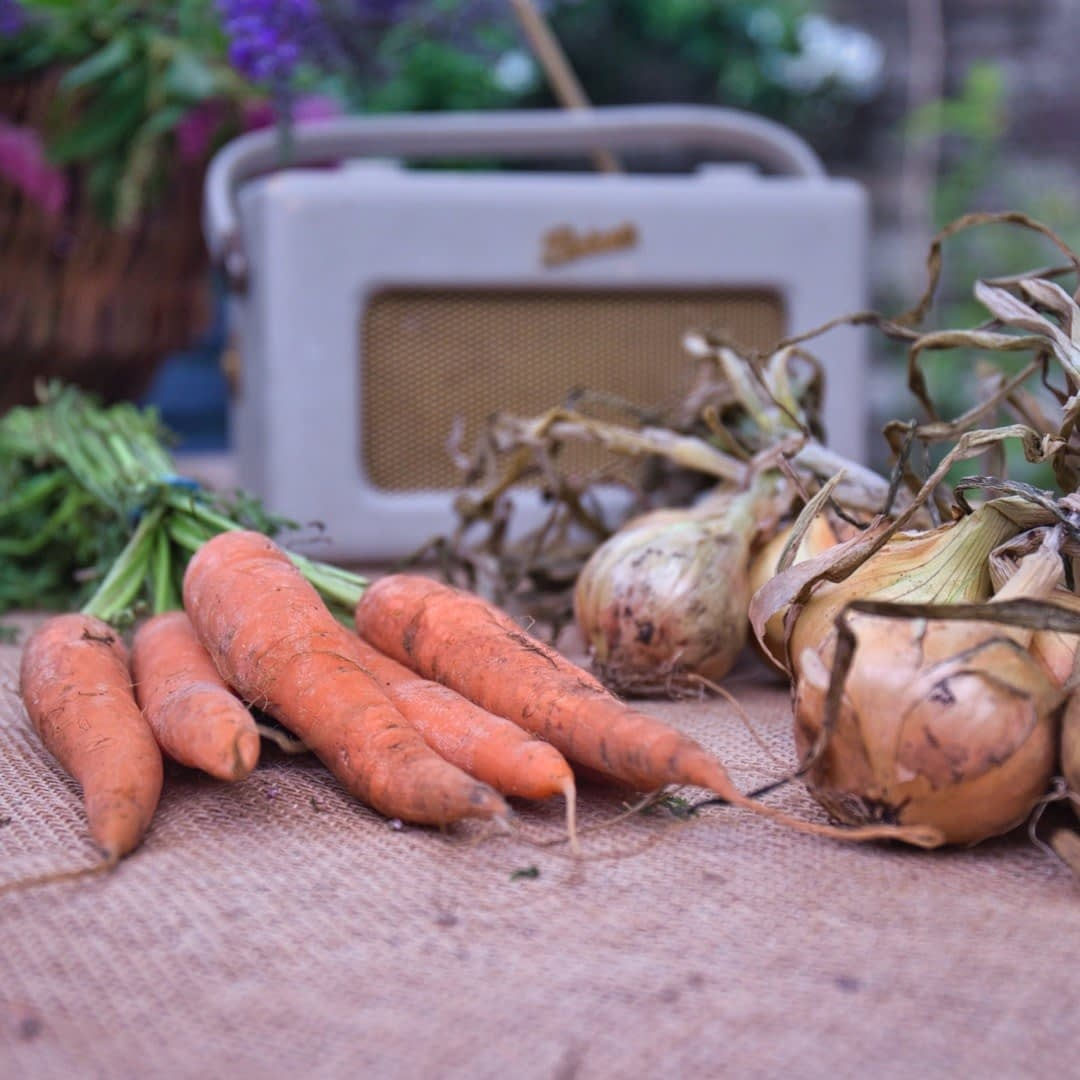 Catherine Tuckwell Personal Brand Photography - eco-friendly photographer session retro radio with carrots and onions